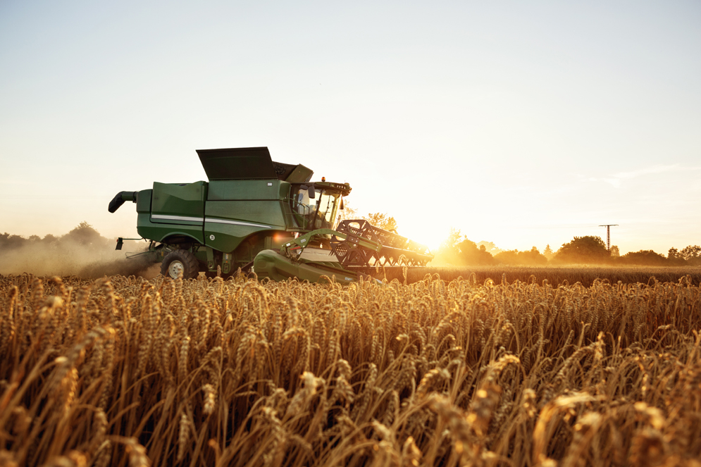 2021 local wheat harvest a success | Perry Daily Journal